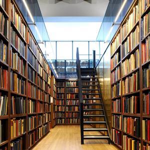 Библиотеки Большой Ижоры