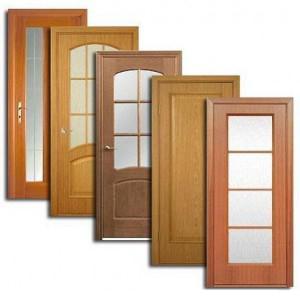 Двери, дверные блоки Большой Ижоры