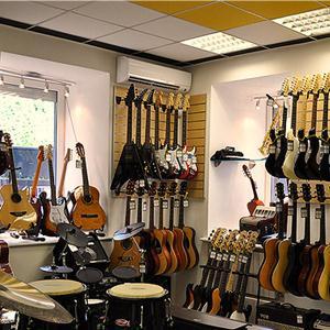 Музыкальные магазины Большой Ижоры