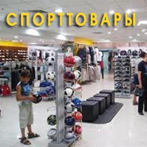 Спортивные магазины Большой Ижоры
